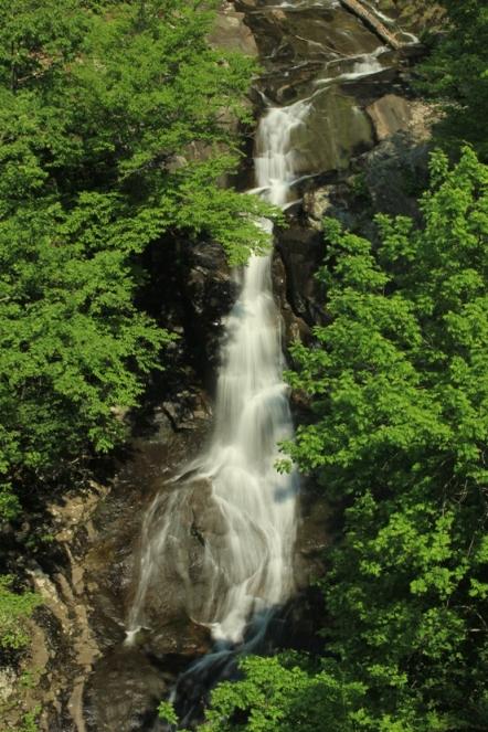 White oak canyon falls trail